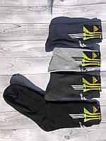 Носки мужские спорт Adidas махра высокие