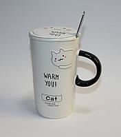 Кружка керамическая с крышкой и ложкой Домашний кот 08030-18 (420 мл)