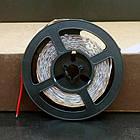 """LED лента BIOM SMD2835 12V IP20 <4.8W LEDs/m60 (белый) """"Standart"""", фото 3"""