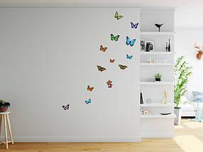 Наклейки бабочки самоклеющиеся для украшения дома 28, фото 3