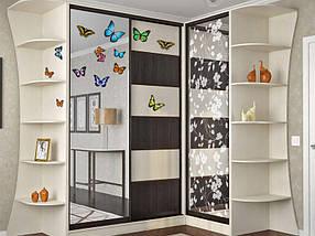 Наклейки бабочки самоклеющиеся для украшения дома, фото 2