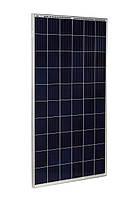 Солнечная панель Risen RSM60-6-280P, 280 Вт, Poly Tier1, фото 1