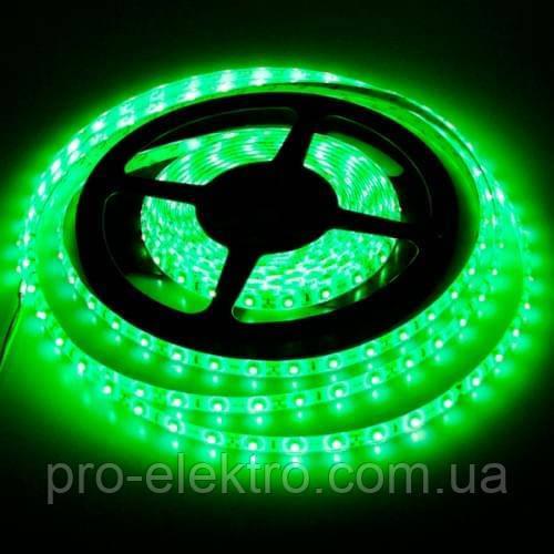 "LED лента BIOM SMD2835 12V IP65 <4.8W LEDs/m60 (Зелёный) ""Standart"""