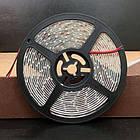 """LED лента BIOM SMD2835 12V IP65 <4.8W LEDs/m60 (Зелёный) """"Standart"""", фото 3"""