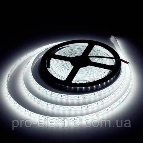 "LED лента BIOM SMD2835 12V IP20 <9.6W LEDs/m120 (Белый) ""Standart"""