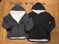 Пайта утепленная для мальчиков оптом, F&D, 8-16 лет,  № YY-2795, фото 1