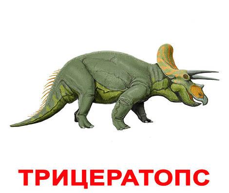 """Большие карточки с фактами /рус./ """"Динозавры"""""""