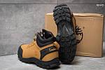 Ботинки Timberland Canard Oxford (песочные) , фото 3