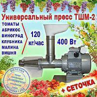 Мощный томатный пресс ТШМ 2 Электромотор 120 кг в час