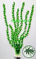 Растение 55см №2