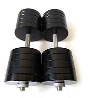 Гантели металлические 2 шт по 48 кг