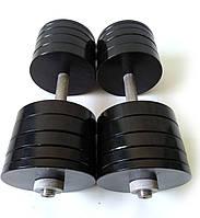 Гантелі металеві 2 шт по 40 кг