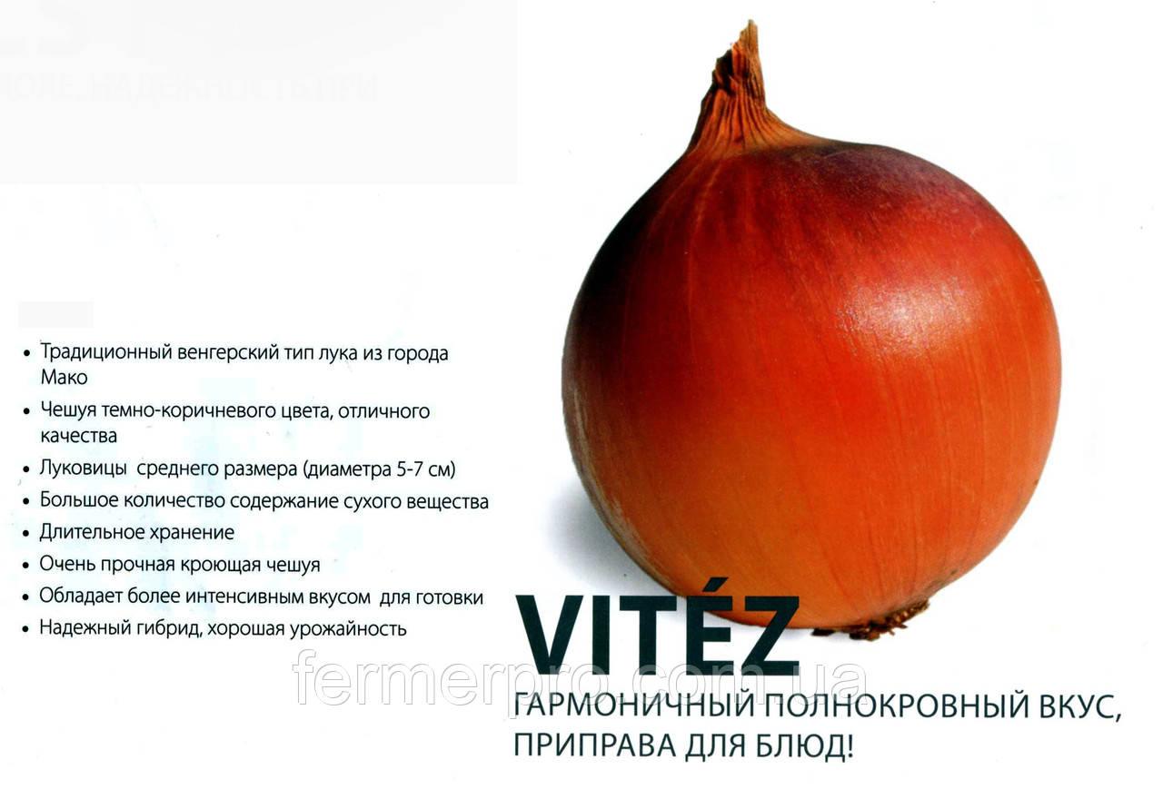 Семена Лука Витязь F1 1кг ZKI (Венгрия)