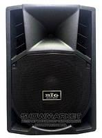 BIG Активная акустическая система BIG RC12FA