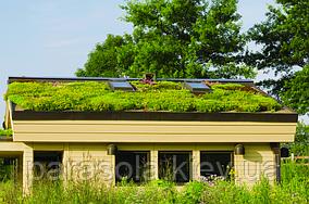 Зеленая крыша - типы.