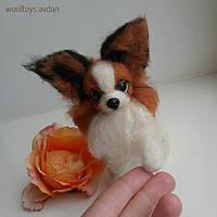 Игрушка - собачка Попильон, из натуральной шерсти. Авторская работа -сухое валяние., фото 1