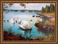 Картина Сімейство лебедів 400х600мм №310 в багетній рамці