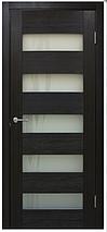 Дверное полотно Диана ПВХ ПО лиана Омис , фото 2