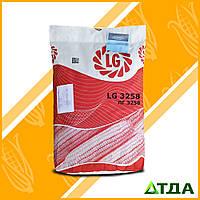 Семена кукурузы ЛГ 3258 ФАО 250