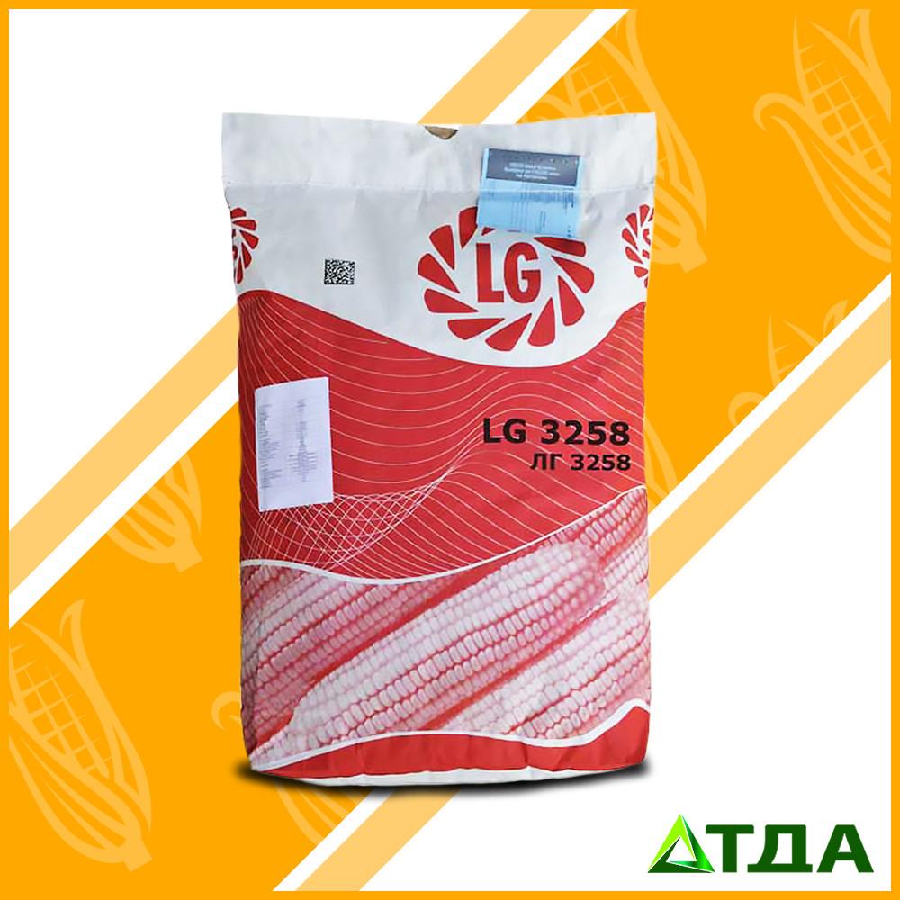 ЛГ 3258 семена кукурузы ФАО 250