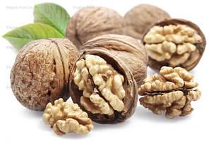 Саженцы грецкого ореха и фундука