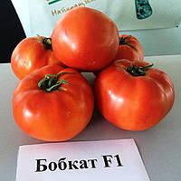 Семена томата Бобкат F1 (1000 сем.) Syngenta, фото 1