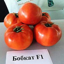 Семена томата Бобкат F1 (1000 сем.) Syngenta