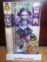 Кукла Ever After High Kitty Cheshire Doll Китти Чешир базовая, фото 1