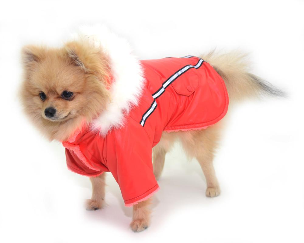 Курточка для собак Осень красная