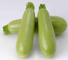 Семена кабачка Арал F1 (1000 сем.) Sakata
