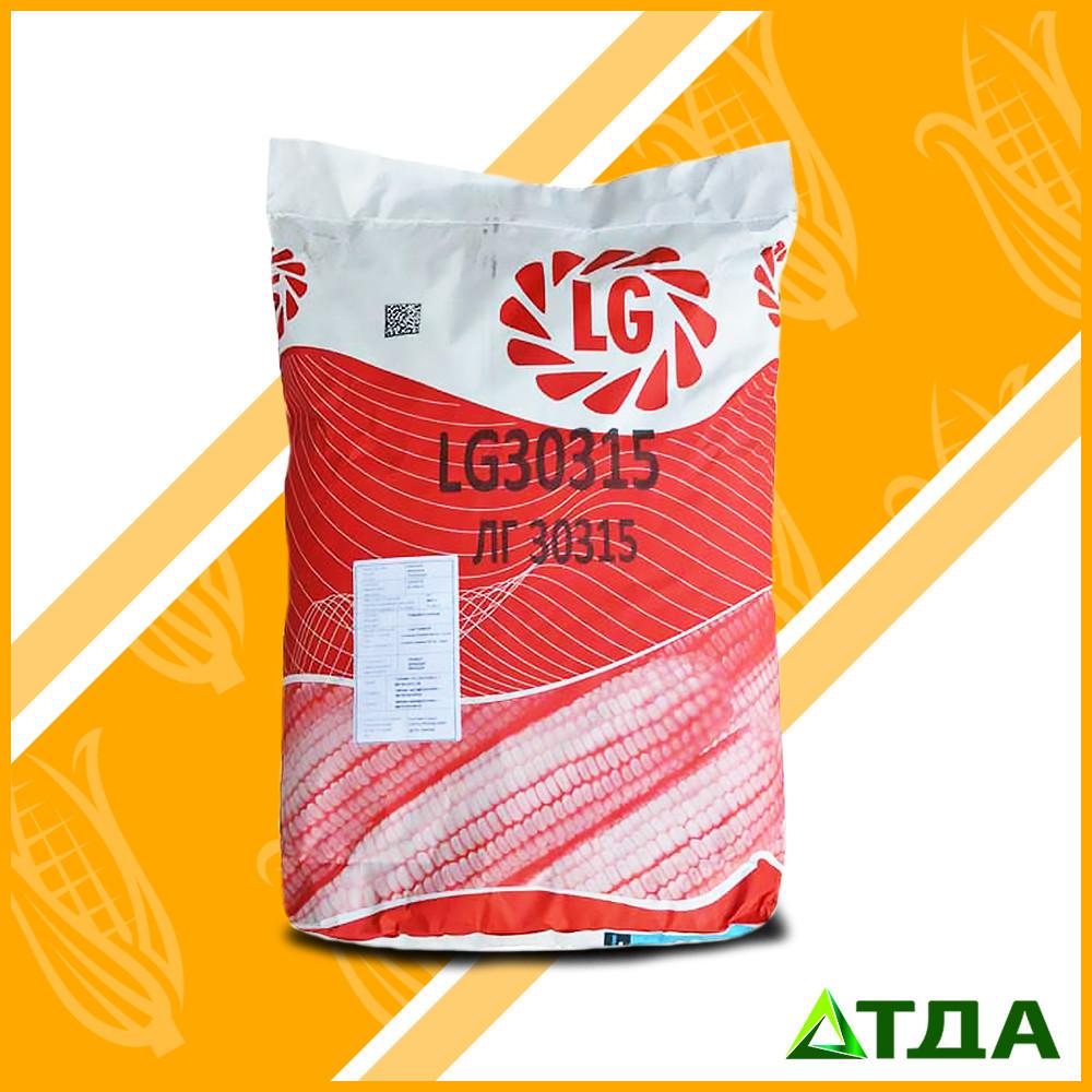 Семена кукурузы ЛГ 30315  ФАО 280
