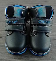 Зимние ботинки для мальчиков Blue Blue Синий Clibee 24
