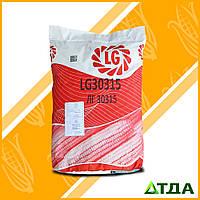 Семена кукурузы ЛГ 30315 укр. ФАО 280