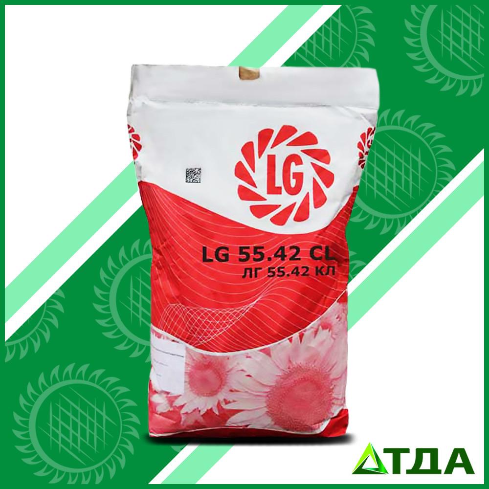 Семена подсолнечника ЛГ 5542 КЛ  Clearfield