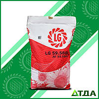 Семена подсолнечника  ЛГ 59580 Круизер