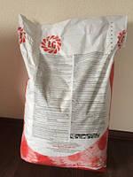 Семена подсолнечника ЛГ 5662 LG 56.62