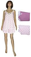 Пижама женская 03252 Неглиже Батал Pink с кружевом, майка и шорты, коттон, р.р.56-66