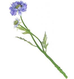 Декоративный цветок Жимолости 2 вида - белый, васильковый (709-343)