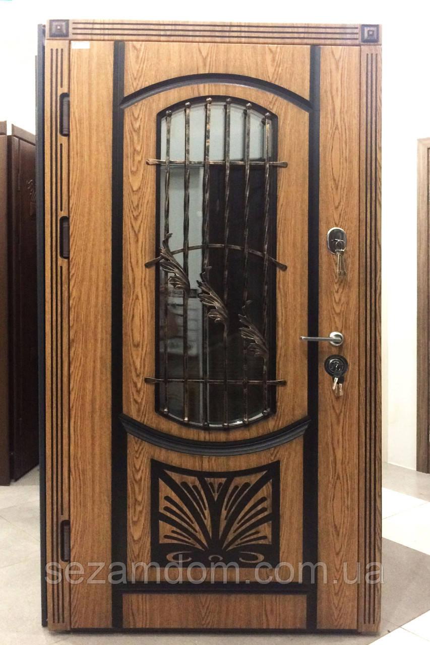 Вхідні двері з ковкою