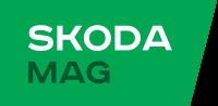 """""""Skodamag"""" запчасти и аксессуары для автомобилей  Шкода и Сеат  Винница"""