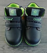 Зимние ботинки для мальчиков Синий/зеленый Clibee 21