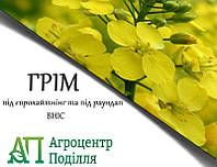 Рапс озимый ГРИМ РС+ІМІ 295-300 дн. (бесплатная доставка)