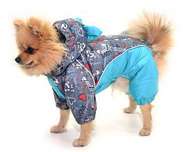 Комбинезон с капюшоном для собак Амур на подкладке omni-heat, серый+бирюза