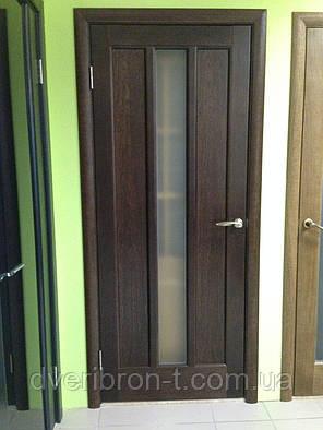 Двери Белоруссии Троя ПО тёмный орех, фото 2