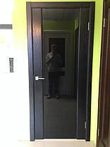 Двери Белоруссии Соня чёрный ясень, стекло триплекс, фото 2