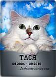 Памятные и ритуальные таблички для животных (изготовление 1 час), фото 7