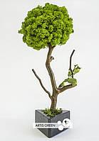 Отличный новогодний и корпоративный подарок Fresh Tree 30 cm