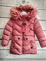 Куртка для девочки,зима, 4-12 лет, Венгрия