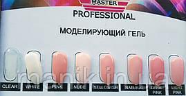 Гель Master Professional 15 мл
