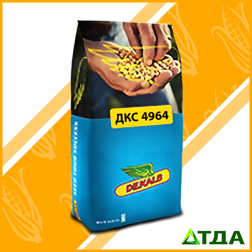 Семена кукурузы DKC 4964 / ДКC 4964 ФАО 380